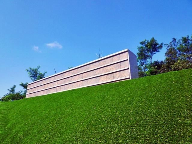 芝生とお墓